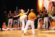 capoeira2014-2015
